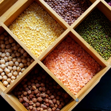 Pulses and Lentils Names List